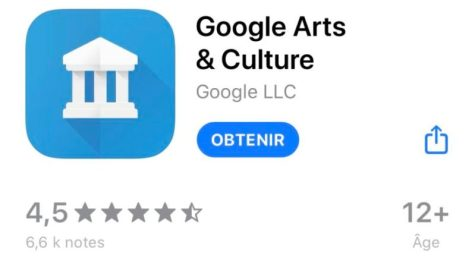 applications les plus bizarres Google Arts & Culture