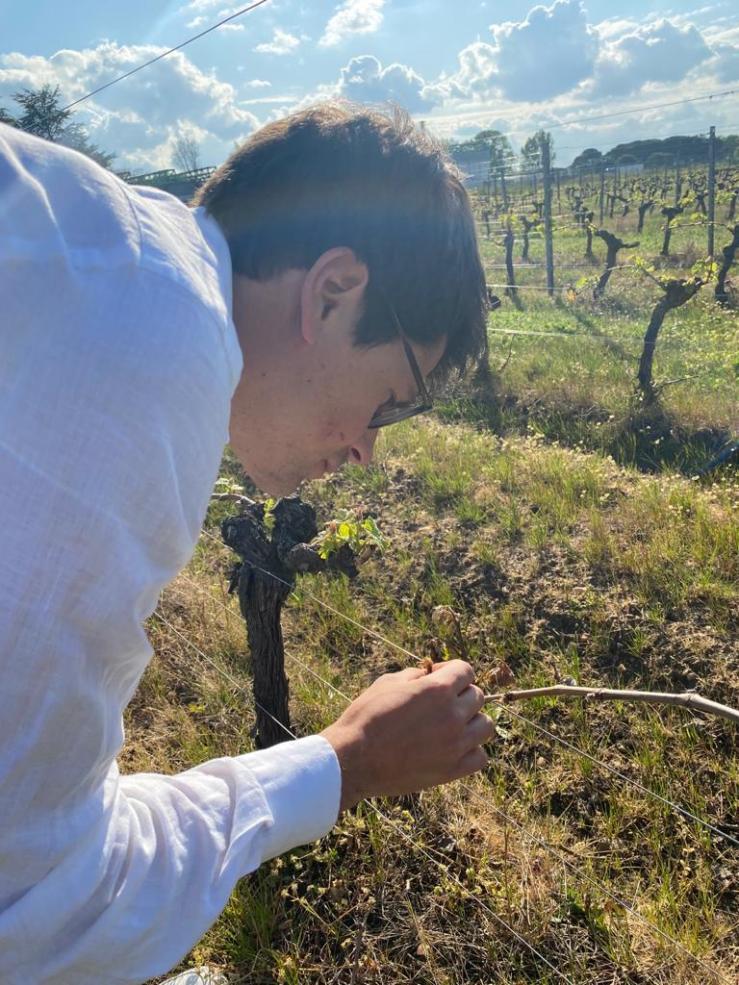 Ethic Drinks les vins bio bons pour la planète