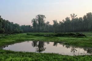 Davis Island: A Confederate Shrine, Submerged