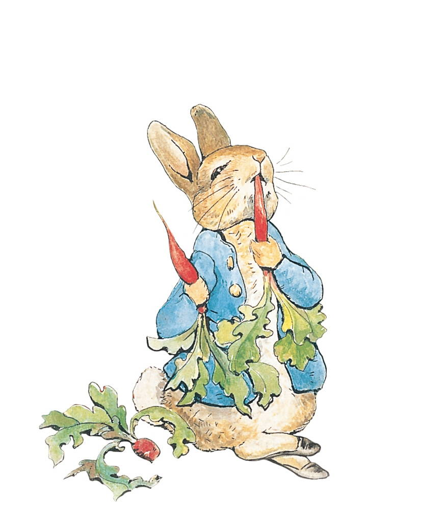 Illustration from The Tale of Peter Rabbit, by Beatrix Potter.