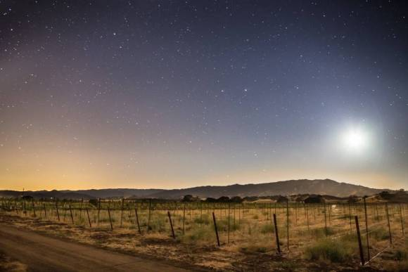 Moonset over a fallow field, Winters, California, 2014. Photo by flickr user John Uhrig (CC BY 2.0).