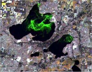 """""""Public Enemy Number One."""" Satellite view of algal blooms on Lakes Mendota and Monona in Madison, Wisconsin. Photo: UW SSEC and WisconsinView."""