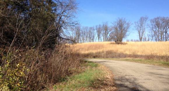 Restoration volunteer efforts have helped the Hillside Prairie remnant reclaim land from encroaching brush on the site of the former Badger Army Ammunition Plant. Source: Author.