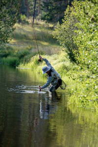 The author landing a fish at the headwaters of the Colorado River. Photo by Andi Pitcher Davis.