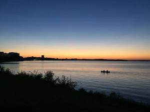 An Ode to Madison's Lake Monster