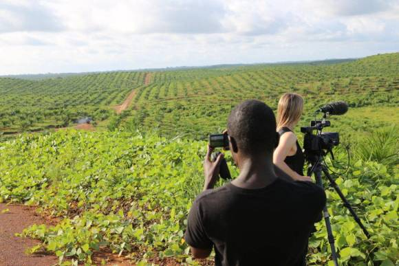 Filming on the Sime Darby concession, a monoculture landscape of newly planted oil palm in Grand Cape Mount county, Liberia. With Emmanuel Urey and Sarita Siegel. Gregg Mitman, June 12, 2014