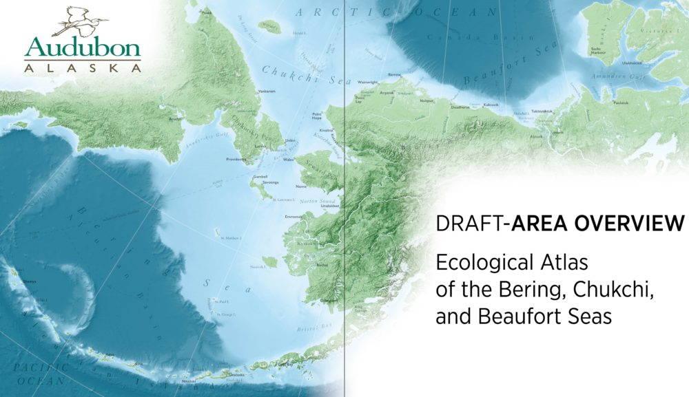 The Audubon Alaska marine atlas spans the Bering, Chukchi, and Beaufort Seas.