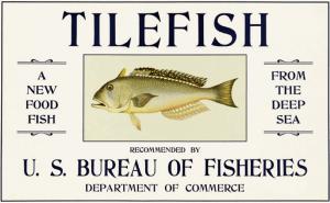 Tilefish and Jello Salad for Family and Nation