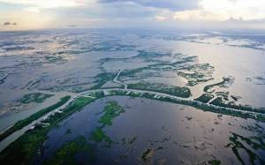 """""""Stop Calling Me Resilient"""": Addressing Environmental Degradation in Louisiana"""
