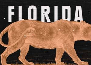 From the cover of Lauren Groff's book Florida, the orange silhouette of a panther is set against a black background with white capitalized letters spelling FLORIDA