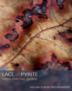 The cover of Lace & Pyrite, a magnified image of a molding yellow and red leaf