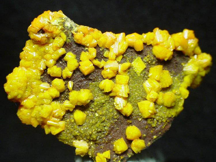Glowing neon yellow crystals cover a brown rock.