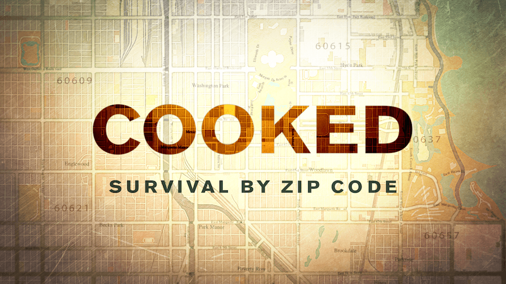 A screen shot of the title screen of the movie Cooked.