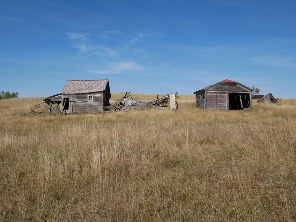 Dry grass fills the foreground while two dilapidated wooden sheds sit in the middle distance under a deep blue sky.