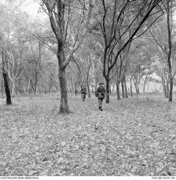 Michitake Aso's History of How Rubber Plantations Reshaped Vietnam