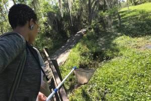 Woman reaches small net into green marsh