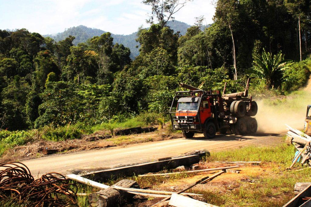 Logging truck with rear axle drives along dirt road