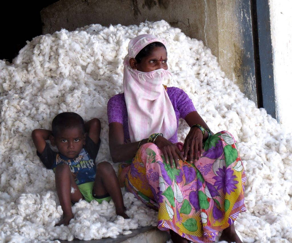 Indian woman and child sit atop a pile of cotton