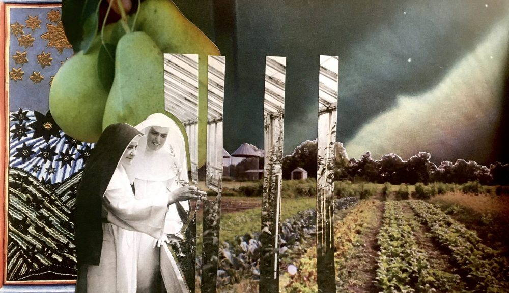 A collage mixing a black and white picture of two nuns, a picture of green pears, and a field.