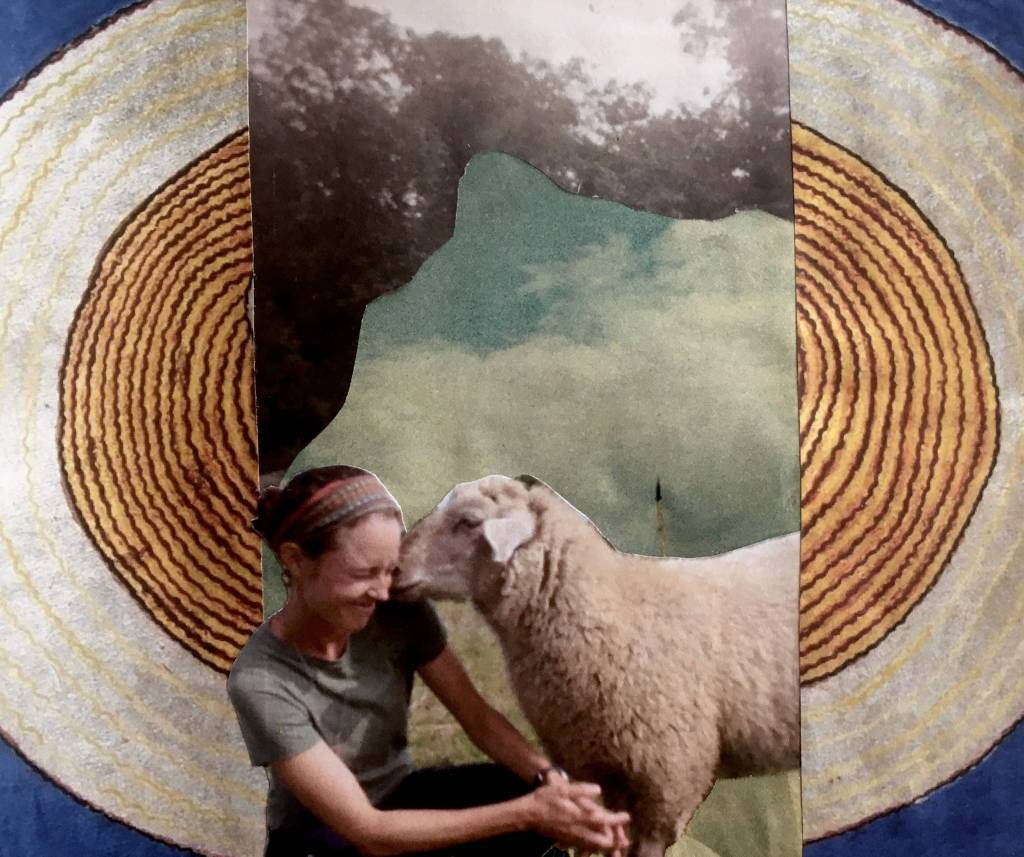 Collage is a woman and sheep rubbing heads with half circles on the side