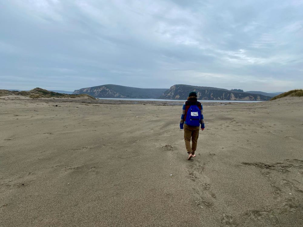 A person walking along Limantour Beach with bluffs in the distance.