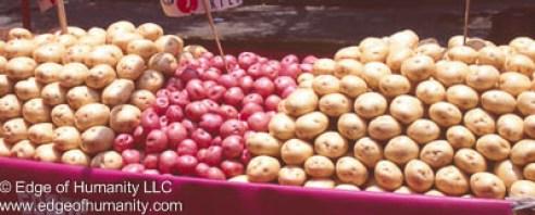 Potatoes - Mexico