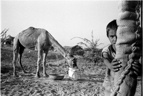 Young boy in the desert village with a camel in the background Rural Rajasthan, India