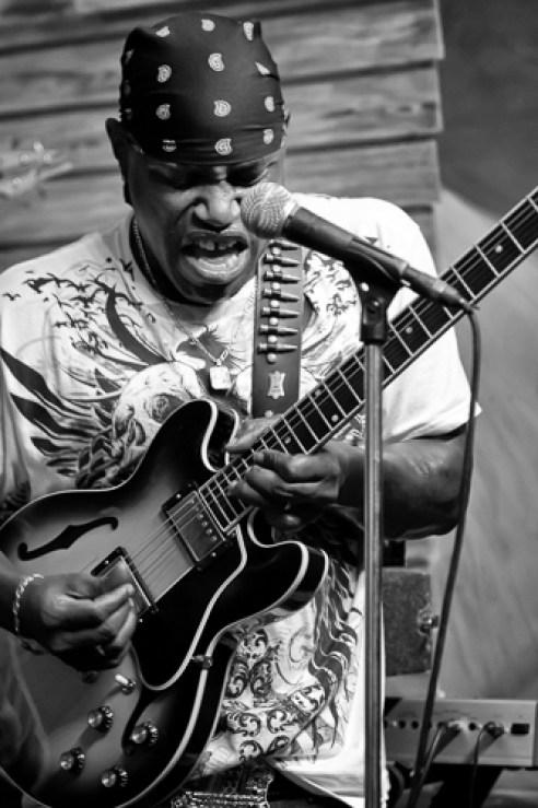"""Blues Guitarist"" Chicago, Illinois, USA"
