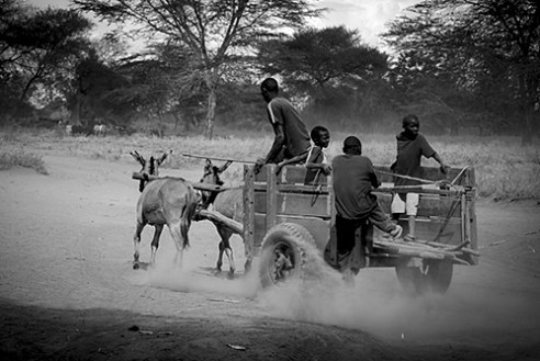 Four boys moving to next village. From Arusha, Tanzania.