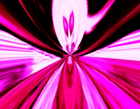 Bunny Warp - Digital piece