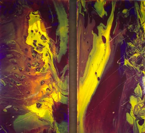 Coral Dive- Fluid acrylics on gallery wrapped canvas-2 panels