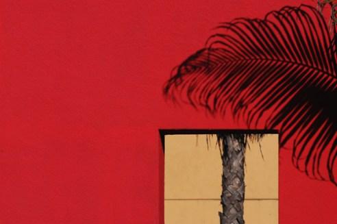 Deconstructed Palm Tree, San Diego, USA