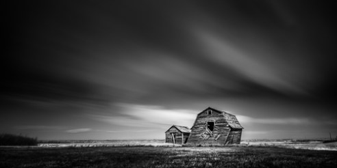 Dying Amongst Friends Kneehill County, Alberta, Canada