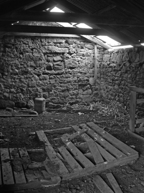 'Weather beaten'. A stone byre that was originally a dwelling for small scale pastoral farming, is now used as a shelter by sheep at Colzium, Pentland Hill, Scotland.