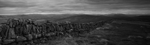 'Hills to the horizon'. Drystone dykes (walls) and bare hills stretch to the horizon, now the haunt of sheep and bare of woodland. Pentland Hills. Scotland.