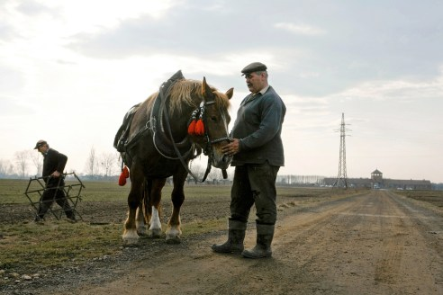 """A farmer releases the reigns from his work horse after plowing his field in front of the Birkenau """"death gate."""""""