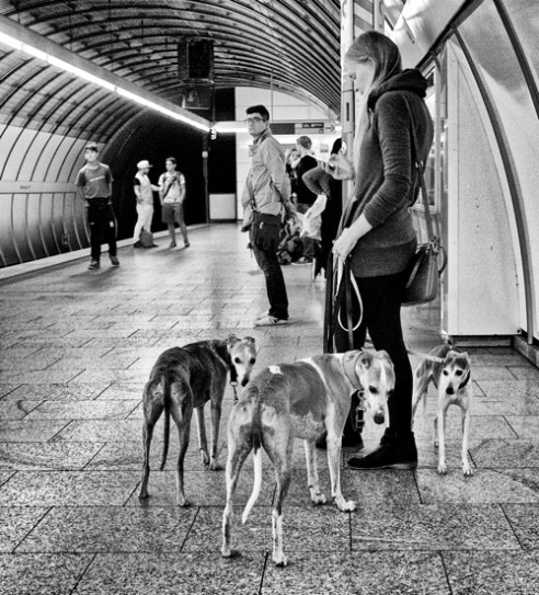 Odeonplatz, U-Bahn Munich. Germany