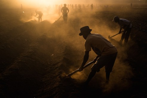 Men dig the holes to plant tobacco near Zomba. They start work before sunrise to avoid the heat. Malawi's economy is heavily dependent on the demand for tobacco. Burley leaf tobacco is responsible for over 70% of Malawi's foreign earnings.