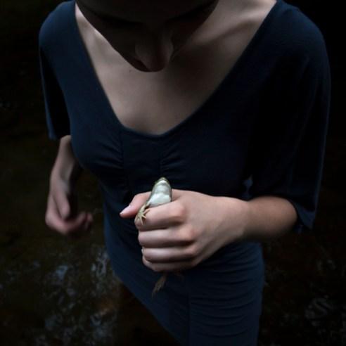 32-thefrog