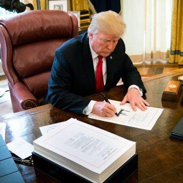 Corporate taxes, Donald Trump, Tax Reform