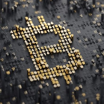 Bitcoin, rise and fall, investment