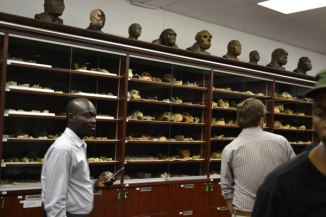"Pictured is the inside of the vault at Wits University. Berger said there was an ""extraordinary spike in discoveries across Africa over the last decade"" and that there is still more to find on the continent."