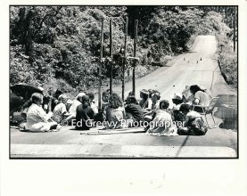 Anti H-3 protesters sit down and block Halawa Valley access road to stop a major concrete pour. 7078-3-25A 8-29-92