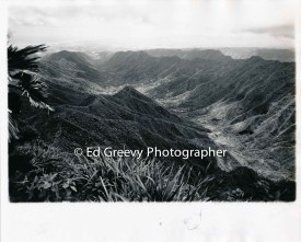 Moanalua Valley (original site of H-3 freeway). From top of Ko`olaus. 2398 1971
