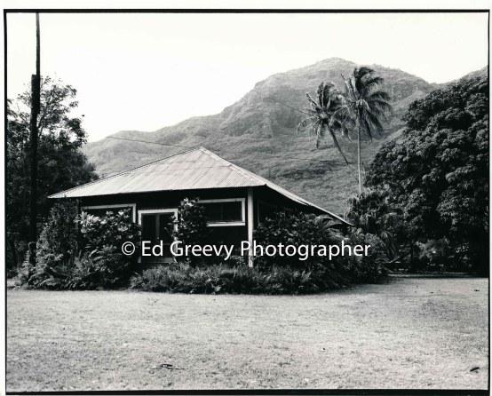 achi-family-home-niumalu-kauai-2666-59-5a-8-73