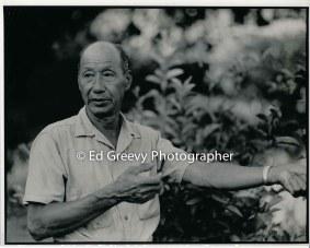 ah-hing-chow-taro-farmer-niumalu-nawiliwili-kauai-2666-81-9a-8-73
