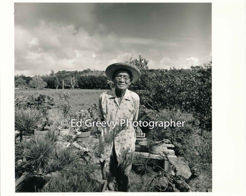 mr-kurishige-in-his-niumalu-nawiliwili-kauai-garden-2666-18-8-8-73