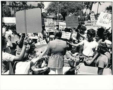 mayor-frank-fasi-confronts-waiahole-waikane-residents-protestinf-the-city-of-honolulu%ca%bbs-role-in-potential-evictions-2988-1-27a-6-16-75