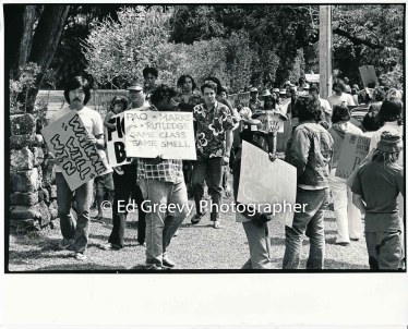 waiahole-waikane-residents-protest-their-evictions-in-front-of-landlord-mrs-marks%ca%bb-house-in-nuuqnu-2965-4-35-4-7-76