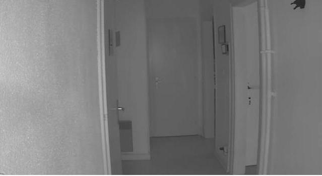 Camera Zipato Vue de Nuit